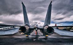 Grumman F14 Tomcat  #F14 #Grumman #Tomcat