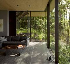 Modern house in the woods with glass facade