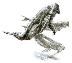 "Odobenocetops (""walrus-face whale""), whale from the Pliocene, Pavel Riha"