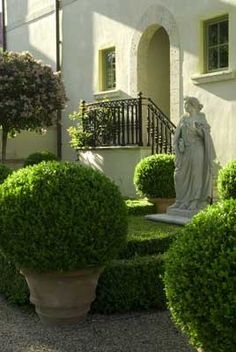 Containers filled with beautiful boxwood and lovel...
