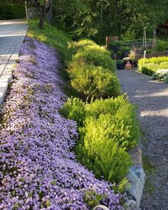 95 Small Cottage Garden Design Ideas - New ideas Garden Steps, Garden Yard Ideas, Garden Projects, Steep Hillside Landscaping, Garden Landscaping, Lake Garden, Garden Cottage, Flower Bed Plants, Landscape Design