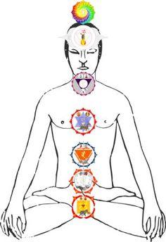 Wenn du YogalehrerIn bist, dann hast du in deiner Yoga-Lehrer Ausbildung bereits…