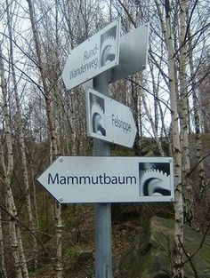 Wandern in und um Osnabrück - Felsrippe Piesberg