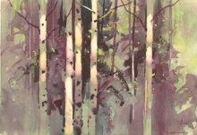 Aspen, Light & Shadow #2        Stephen Quiller