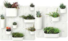 Decora el hogar: Macetas y plantas para el interior del hogar