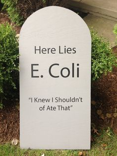 tombstone idea more - Funny Halloween Tombstone Names