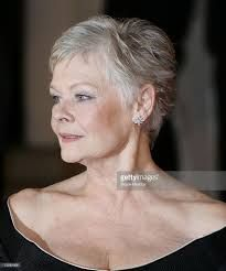 2016 style of judi dench Judy Dench Hair, Judi Dench, British Academy Film Awards, Great Hair, Queen Elizabeth, Good Skin, My Hair, Short Hair Styles, Actresses