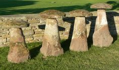 A set of four antique sandstone staddle stones of similar shape but varying height, each with mossy round tops on tapered round bases. These staddle stones were all formerly in the same private garden in the Warwickshire village of Fillongley.    18/19th century