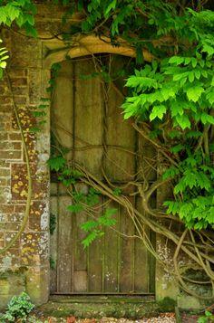 Door to The Secret Garden, Athelhampton, Dorset, England  by Lex McKee