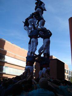 Ganàpies de la UAB. Diada d'hivern d'Arreplegats, 2011