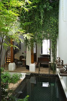 Backyard OR Courtyard Inspiration based on The Siam Hotel in Bangkok, Thailand. Home And Garden, Small City Garden, Small Gardens, Inside Garden, Swiming Pool, Indoor Swimming Pools, Swimming Pool Designs, Little Pool, Porch Ideas