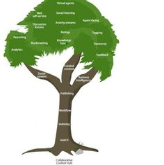 The New Knowledge Management: What Does A Collaborative Content Hub Look Like   Forrester Blogs