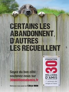 NON À L'ABANDON !!!! L'ABANDON rimes avec trahison