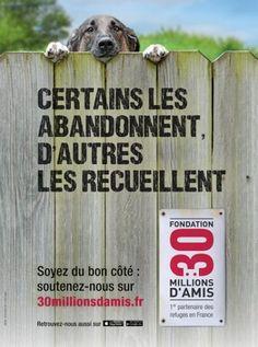 Eté 2013 - Campagne anti-abandon de 30 millions d'amis. http://www.ladepeche.fr/article/2013/06/09/1646087-nouvelle-campagne-30-millions-amis-contre-abandon-animaux-ete.html