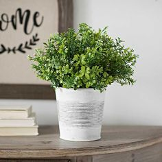 You'll love this beautiful Green Boxwood Arrangement in a White Galvanized Pot. This artificial plant will look perfect sitting on your desk or a bookshelf. Decor, Cheap Artificial Flowers, Flower Arrangements Center Pieces, Cheap Home Decor, Best Interior Design Websites, Cheap Home Decor Online, Home Decor Online, Discount Home Decor, Home Decor Sale