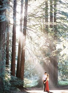 Light Filled Engagement Photos in The Redwoods - Inspired By This - May 26 2019 at Themed Engagement Photos, Engagement Photo Props, Fall Engagement, Engagement Pictures, Engagement Shoots, Country Engagement, Vintage Wedding Photography, Wedding Photography Inspiration, Couple Photography