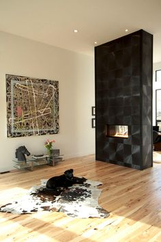 14 best Room Dividers Fireplaces images on Pinterest Fire places