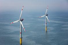 -Der Windpark Global Tech I ist mit CMS ausgestattet.