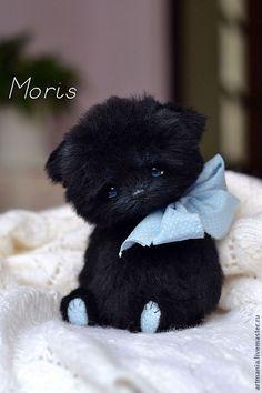 Купить Морис) - чёрный, черный кот, черный котененок, котик, котенок, голубоглазый котенок