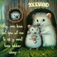 Good Night Sleep Tight, Afrikaanse Quotes, Goeie Nag, Angel Prayers, Good Night Wishes, Special Quotes, Inspirational Quotes, Motivational, Bible