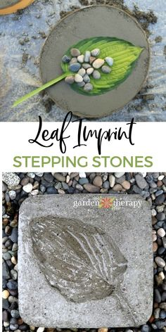 DIY stepping stones are the perfect way to add charm and function to your garden. You might be surprised at just how easy it is to make your own stepping stones. #gardentherapy #steppingstones #diy #craft #gardening Garden Projects, Diy Projects, Make Your Own, How To Make, Garden Stones, Stepping Stones, Therapy, Home And Garden, Leaves