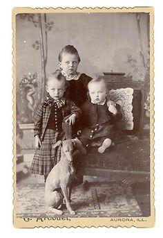 Italian Greyhound With Children Antique Cabinet Card Photograph Extraordinary   eBay