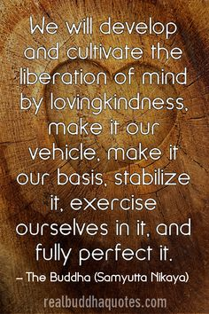 Real Buddha Quotes  Page 4  Verified Quotes from the Buddhist Scriptures