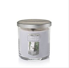 Yankee Candle Small Tumbler - Silver Birch - Autumn is in the air … the slight crispness of an early fall breeze mingles with the spicy dryness of just-turning leaves