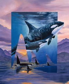 Orca Art by Graeme J Stevenson Orca Art, Whale Art, Wale, Killer Whales, Sea World, Ocean Life, Marine Life, Under The Sea, Dolphins