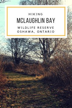 Hiking McLaughlin Ba