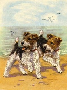 Wire Fox Terrier Charming Dog Greetings Note Card Two Cute Dogs On The Beach Perro Fox Terrier, Wirehaired Fox Terrier, Wire Fox Terrier, Dog Illustration, Illustrations, Smooth Fox Terriers, Animal Action, Vintage Dog, Dog Portraits