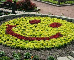 Our smiley face is sure to bring a smile to young and old alike. Happy Smiley Face, Happy Faces, Smiley Faces, Garden Tips, Garden Art, Happy D, Sensory Garden, Emoticons, Flower Landscape