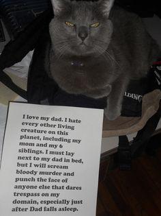 Cat-Shaming. @Claudia Park Park Park Park Sanchez. It is stinky, he only loves his dad!