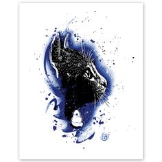 C215_cat_blue