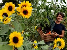 Women farmers unite! More and more women growing crops and feeding the planet.