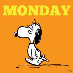 I would like to draw this Snoopy - I like his tired face :) Snoopy Love, Snoopy And Woodstock, Peanuts Cartoon, Peanuts Snoopy, Snoopy Pictures, Funny Pictures, I Hate Mondays, Snoopy Quotes, Charlie Brown And Snoopy