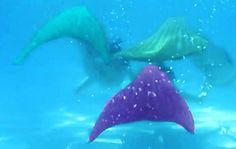 Magictail'i daha önce duymuş muydunuz? Çocukların gelişimine katkıda bulunan %100 orijinal deniz kızı kostümleri ve hakkımızda bilmek istediğiniz her şey www.magictail.com.tr