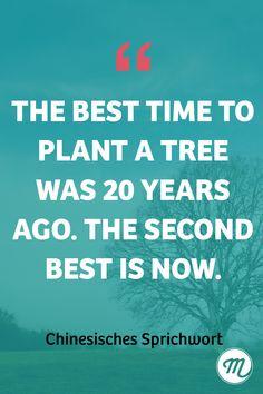 The best time to plant a tree was 20 years ago. The second best is now. #motivation #spruch #quote