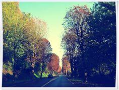 Road to Honfleur, France