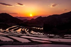 東京から一番近い棚田「大山千枚田」へ行きませんか?秋には「棚田の夜祭り」も開催!