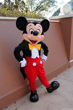 Mickey Mouse ミッキー、ミッキー着ぐるみならhttp://www.mascotshows.jp/product/mickey-mouse-mascot-adult-costume.html