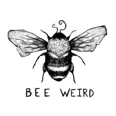 Those charmingly disturbed little things. Bumblebee Drawing, Bumble Bee Tattoo, Bee Free, I Love Bees, Illustrators On Instagram, Bee Happy, Little Things, Doodle Art, Blackwork