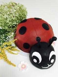 Marienkäfer Torte zum 1. Geburtstag, Ladybug Cake