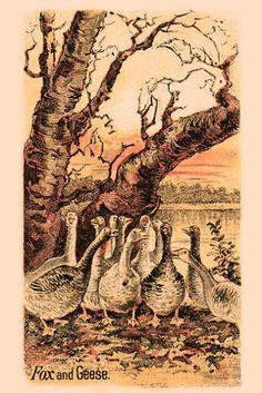Además de los 11 gansos, ¿eres capaz de encontrar otro animal que se encuentra oculto en esta postal de ? Si lo descubres puedes dejarnos tu opinión en los comentarios ocultándolo con el comando s...