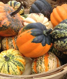 decorate with not-perfect pumpkins.