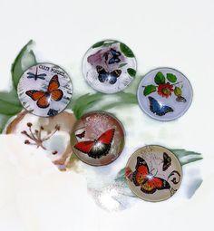 5 Decorative Magnets  For Refrigerator by PurePoetrysEmporium
