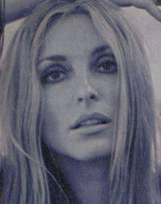 Sharon Tate, Classic Beauty, Timeless Beauty, Iconic Beauty, Beautiful Soul, Most Beautiful Women, Beautiful People, Charles Manson, Roman Polanski