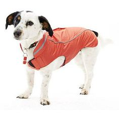 Buster Strawberry Raincoat, Xss, Multicolor