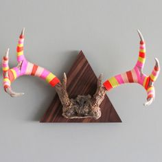 Large Walnut 6 Point Axis Antler, $200, now featured on Fab.