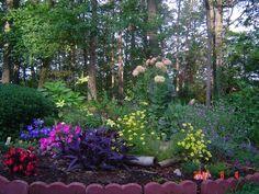 My garden <3